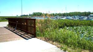 Click image for larger version  Name:Geneva State Park 7.jpg Views:74 Size:51.1 KB ID:483