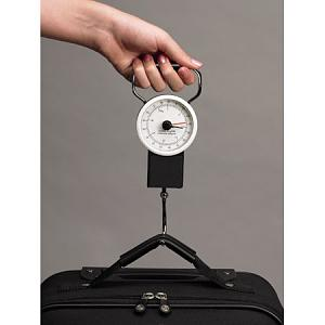 Click image for larger version  Name:luggage scale2.jpg Views:52 Size:18.8 KB ID:5916
