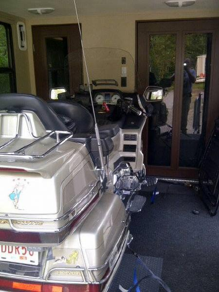 Goldwing in back